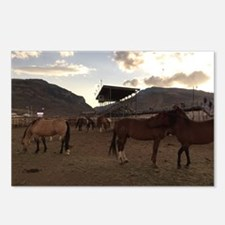 The Cody Wyoming Broncos Postcards (Package of 8)