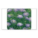 Scabiosa Blue Rectangle Sticker