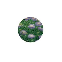 Scabiosa Blue Mini Button (10 pack)