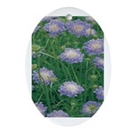 Scabiosa Blue Oval Ornament
