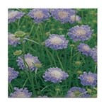 Scabiosa Blue Tile Coaster