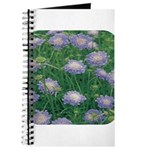 Scabiosa Blue Journal