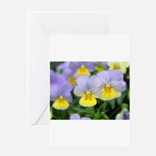 yellow purple pansy flower Greeting Cards