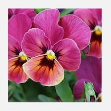European Garden Pink Pansy Flower Tile Coaster