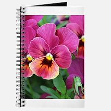 European Garden Pink Pansy Flower Journal