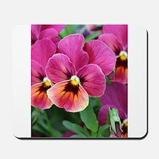 European Garden Pink Pansy Flower Mousepad