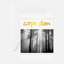 Care Diem Seize the day Greeting Cards