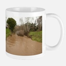 Guadalupe River San Jose Mugs