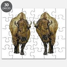 BISON Puzzle
