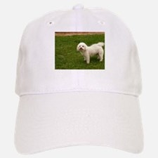 little white Maltese guard dog Baseball Baseball Cap