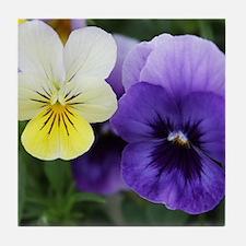 Italian Purple and Yellow Pansy Flowers Tile Coast