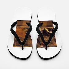 Space Heater Flip Flops