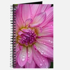 Two pink dahlia flowers Journal