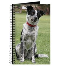 Funny Coolie Journal
