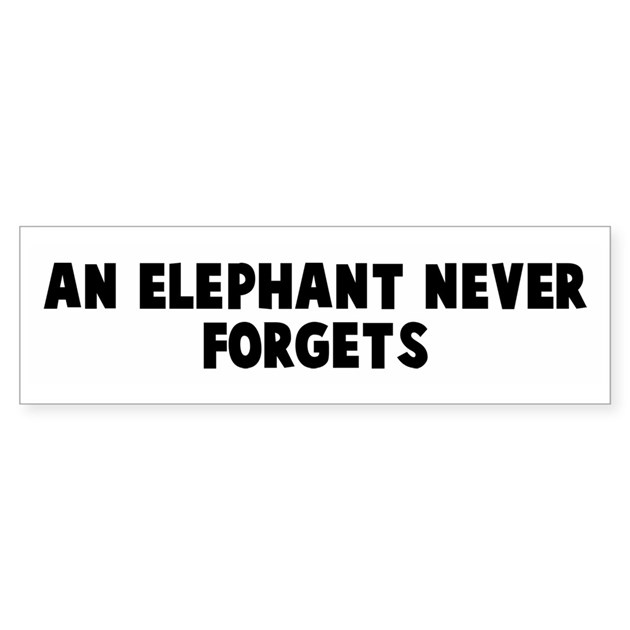 an elephant never forgets bumper bumper sticker by yoursayings. Black Bedroom Furniture Sets. Home Design Ideas