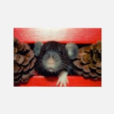 Cute Dumbo rat Rectangle Magnet