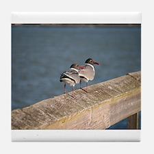gulls on rail Tile Coaster