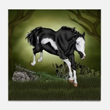 Black and White Overo Paint Horse Tile Coaster