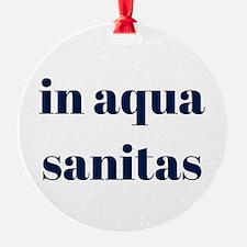 in aqua sanitas Ornament