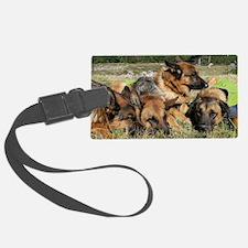 Cute Hiking dog Luggage Tag