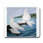 White Trumpeter Pigeons Mousepad