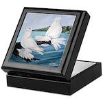 White Trumpeter Pigeons Keepsake Box