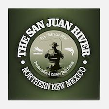 San Juan River Tile Coaster