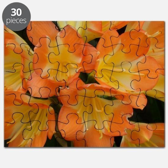 """Touch Of Orange"" Puzzle"