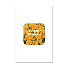 Coreopsis Flower Power Posters