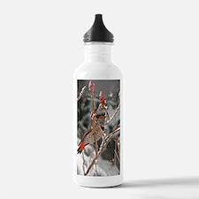 Funny Migration Water Bottle
