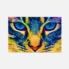 Funny Cats kittens Rectangle Magnet