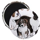 Welsh corgi 10 Pack