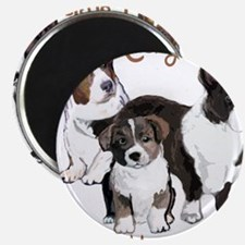 Cardigan corgi family Magnets