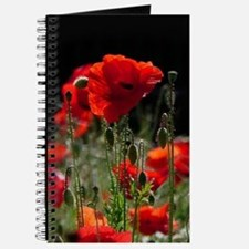 Red Poppies in bright sunlight Journal