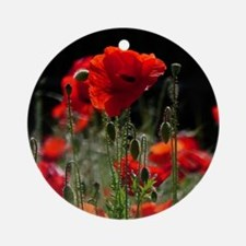 Red Poppies in bright sunlight Round Ornament