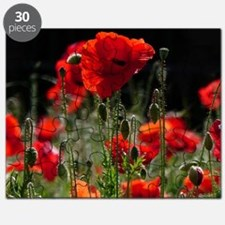 Red Poppies in bright sunlight Puzzle