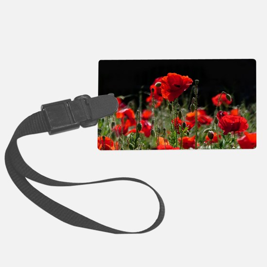 Red Poppies in bright sunlight Large Luggage Tag