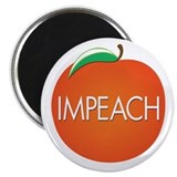 Impeach Magnets