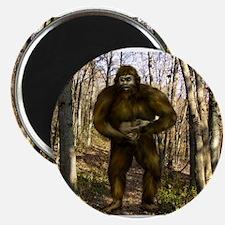 Bigfoot forest Magnets