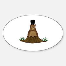 Unique Groundhog day Sticker (Oval)