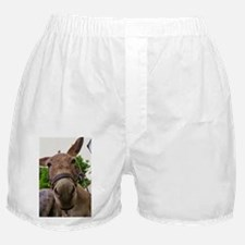 MAKE AN ASS OF YOURSELF Boxer Shorts