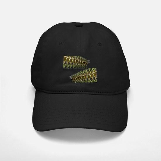 MARCH Baseball Hat
