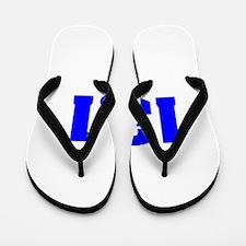 13.1 Flip Flops