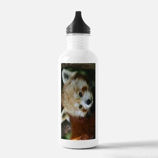 Cute A bearcat Water Bottle