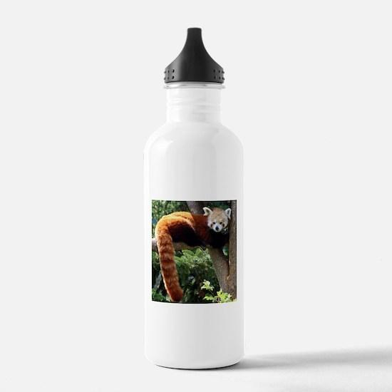 Lounging Red Panda Water Bottle