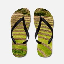 Cool Andes mountains Flip Flops