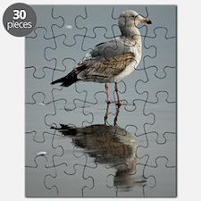 Cute Sea gull Puzzle
