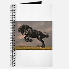 Beautiful horse stallion horses sunset Journal