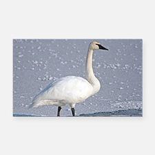 Cute Swans Rectangle Car Magnet