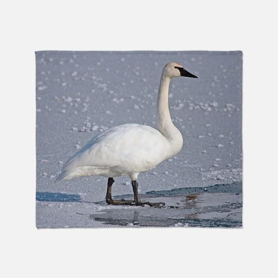 Cute Swans Throw Blanket